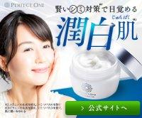 パーフェクトワン / 新日本製薬