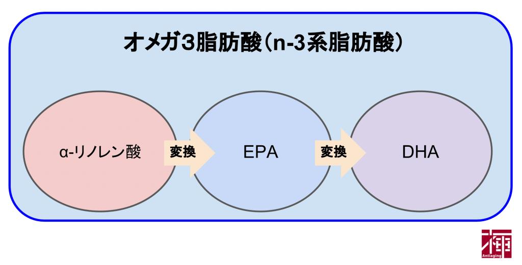 オメガ3脂肪酸(n-3系)