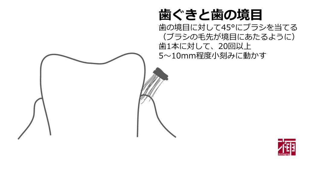 歯を白くする方法 正しい歯の磨き方2