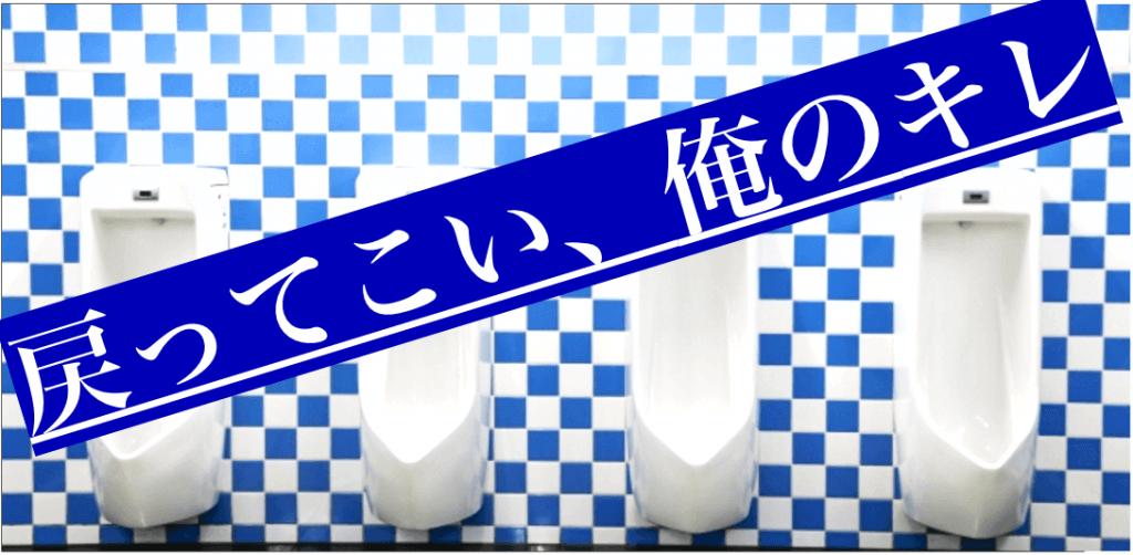 ノコギリヤシ 効果効能 頻尿 前立腺肥大症
