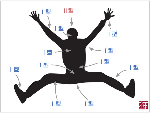 Ⅱ型の分布範囲