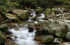 天然水 ウォーターサーバー