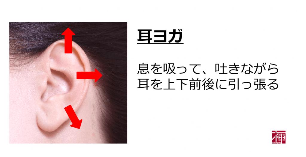 視力回復 耳ヨガ