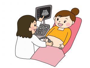妊娠 妊婦健診 双子 費用