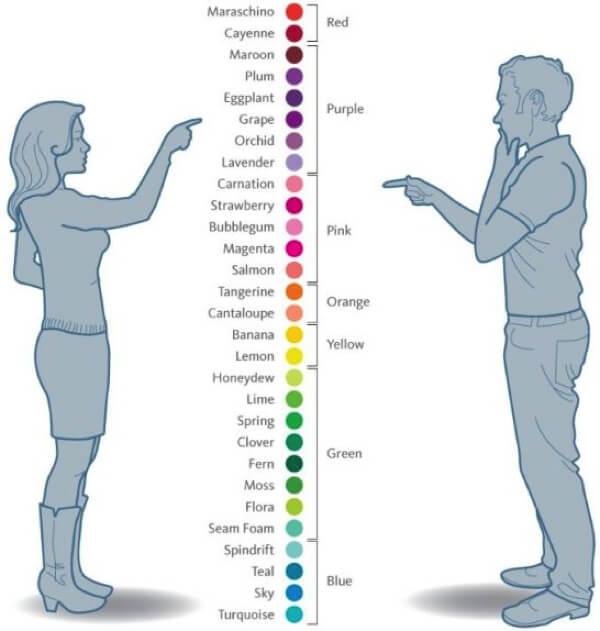 男女 色彩感覚の違い