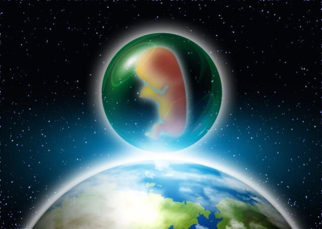 葉酸 胎児 妊娠
