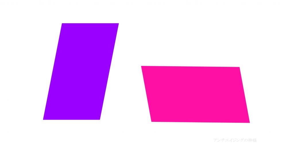 眼の錯覚 シェパード錯視