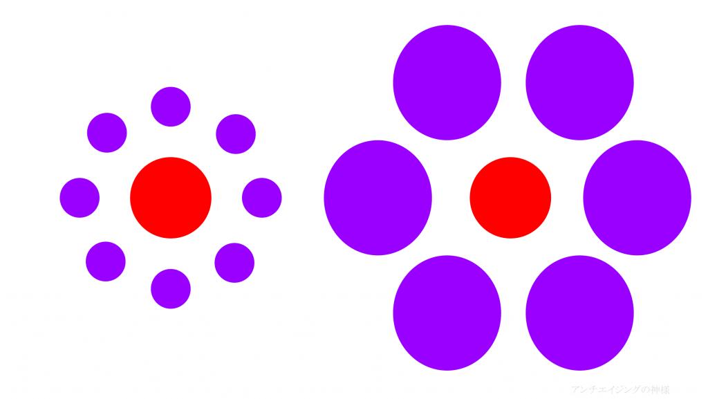 眼の錯覚 エビングハウス錯視