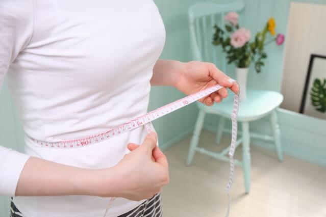 女性 ウエスト 葉酸 ダイエット
