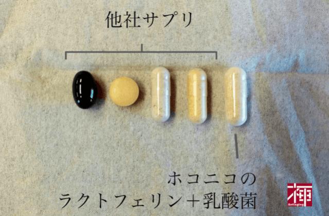 ホコニコのラクトフェリン+乳酸菌 大きさ サプリメント