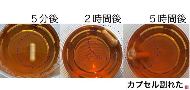 乳酸菌革命 サプリ 耐久性