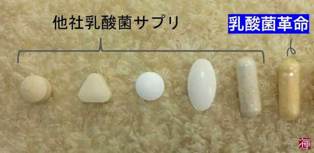 乳酸菌革命 サプリ カプセル 大きさ