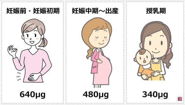 葉酸サプリ 摂取量 妊娠初期 妊活