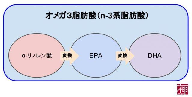 オメガ3脂肪酸 効果