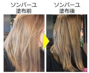 ソンバーユ 髪