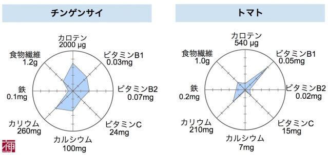 ケール 栄養比較