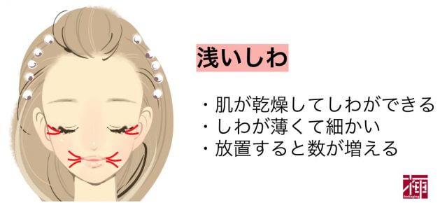 浅いシワ シワに効く化粧水