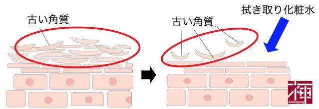 拭き取り化粧水 説明用