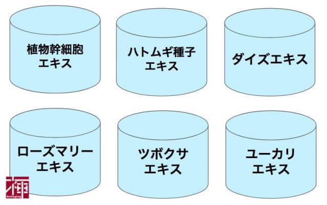 保湿成分 オーガニック化粧水